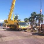 TOWER-Crane-fatality-42